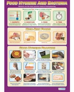 Poster - Food Hygiene and Bacteria (Laminated) [77164]