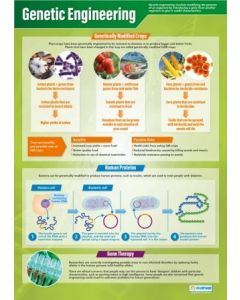 Genetic Engineering Poster A1 Laminated [3091]